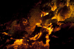 Fire burning Stock Image