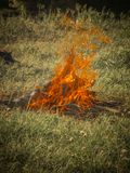 Fire Burning Might. Fire Burning Background Wallpaper Heat Marshmallow Firewood Grass Bonfire Red Might Stock Photos