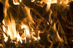 The fire from the burning bales of soya. Photographed stove in a small village near Novi Sad, Serbia Stock Photography