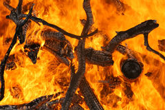Fire. Burning branches. Burning in the fire branch. Big flames Royalty Free Stock Images