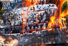 Fire burning in a campfire stock photo