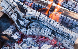Fire burning in a campfire Royalty Free Stock Photo