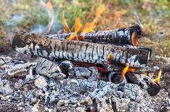 Fire burning in a campfire Stock Image