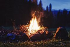 Bonfire at night in the forest. Stock Photos