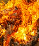 Fire of burning carton paper. Red fire of burning carton paper royalty free stock photography
