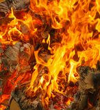 Fire of burning carton paper. Red fire of burning carton paper stock photo