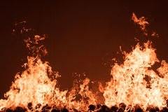 Fire burning. On coconut shell Royalty Free Stock Photography