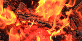 The fire Stock Image