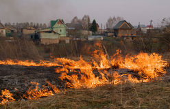 Fire - burning of a dry grass Stock Images