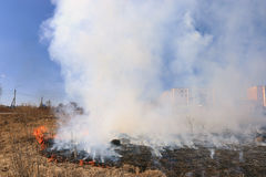 Fire burning dry grass dangerously Royalty Free Stock Image