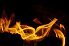 Fire burning dry grass dangerously Royalty Free Stock Photo