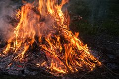 Fire from burning dry twigs. Night fire from burning dry twigs closeup on rural farm meadow Stock Photo