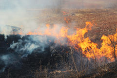 Fire burning on farmland Royalty Free Stock Photography