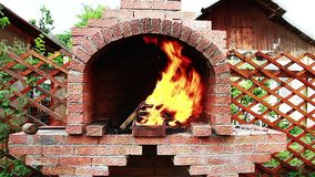 Fire burning in a fireplace Royalty Free Stock Photo