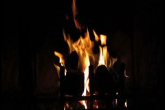 Fire burning in fireplace stock video footage