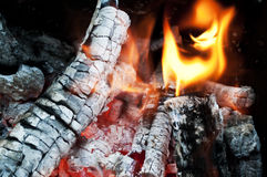 Fire from burning firewood with ashes and flames Stock Images