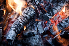 Fire from burning firewood with ashes and flames Stock Photography