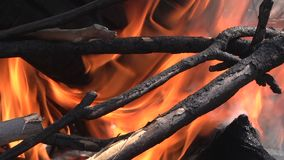 Fire burning flame HD 1080. I stock video
