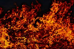 Fire. Burning grass in spring Royalty Free Stock Photography