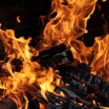 Fire and burning log. Fire flames with logs and dark background royalty free stock photography