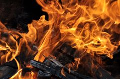 Fire and burning log. Fire flames with logs and dark background stock image