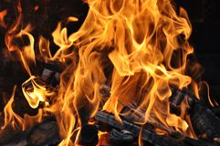 Fire and burning log. Fire flames with logs and dark background stock images