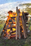 Fire, burning logs Stock Photography