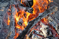 Fire, burning logs Royalty Free Stock Images