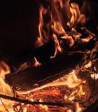 Fire burning Logs Royalty Free Stock Image