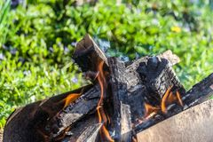 Fire. Burning logs in the mangal. Royalty Free Stock Photography