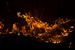 Fire burning Royalty Free Stock Image