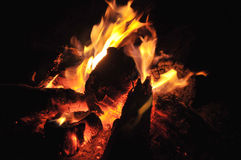 Fire burning at night Royalty Free Stock Image