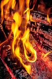 Fire burning in the night Stock Photography