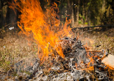 Fire burning refuse Royalty Free Stock Photo