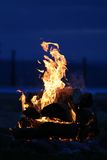 Fire burning. Wood burning in the evening light royalty free stock images