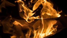 Fire: burning wood in the fireplace Royalty Free Stock Images