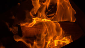 Fire: burning wood in the fireplace Stock Images