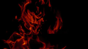 Fire: burning wood in the fireplace Stock Photography