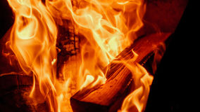 Fire: burning wood in the fireplace Royalty Free Stock Photo