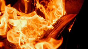 Fire: burning wood in the fireplace Royalty Free Stock Photography