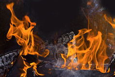 Fire. The fire, burning wood in the furnace, making charcoal for oral food Stock Photography