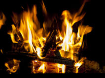 Fire. Burning wood on the grill royalty free stock photos