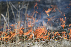Fire burns grass field brick houses Stock Photos