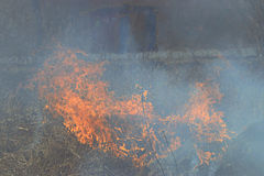 Fire burns grass field brick houses Royalty Free Stock Photos