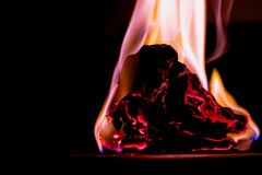 Fire on burns paper with black background. Soft Focus. Beautiful concept flames. Fire on burns paper with black background. Soft Focus royalty free stock images