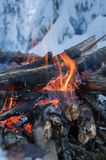 Fire burns in the snow in the woods, on a background of snow-covered firs. Walpaper, Fire burns in the snow in the woods, on a background of snow-covered firs Stock Images