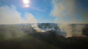 Fire burns stubble on the field, aerial video stock video