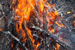 Fire in the camp Royalty Free Stock Photos