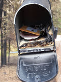 Fire Casualty. Mailbox burned in catastrophic wildfire in the western US Stock Photos