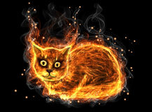 Fire cat. On a black background Royalty Free Stock Photo